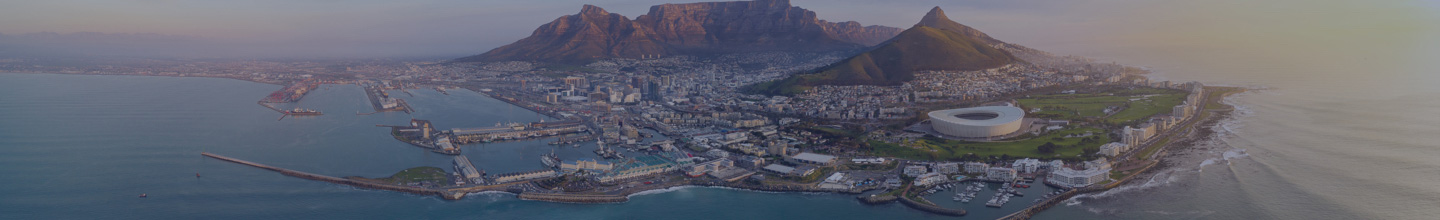 Apply Online For A South Africa E Visa Information And Requirements